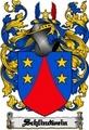 Thumbnail Schlindwein Family Crest  Schlindwein Coat of Arms Digital Download