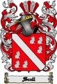 Thumbnail Scull Family Crest  Scull Coat of Arms Digital Download