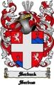 Thumbnail Serback Family Crest  Serback Coat of Arms Digital Download