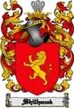Thumbnail Shilhanek Family Crest  Shilhanek Coat of Arms Digital Download