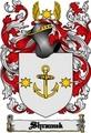 Thumbnail Shramek Family Crest  Shramek Coat of Arms Digital Download