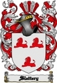 Thumbnail Slattery Family Crest  Slattery Coat of Arms Digital Download