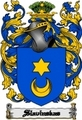 Thumbnail Slavinskas Family Crest  Slavinskas Coat of Arms Digital Download