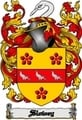 Thumbnail Slowey Family Crest  Slowey Coat of Arms Digital Download