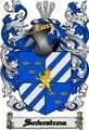 Thumbnail Soderstrom Family Crest  Soderstrom Coat of Arms Digital Download