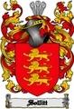 Thumbnail Sollitt Family Crest  Sollitt Coat of Arms Digital Download