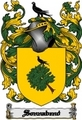 Thumbnail Sonnabend Family Crest  Sonnabend Coat of Arms Digital Download