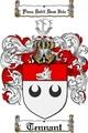 Thumbnail Tennant Family Crest / Tennant Coat of Arms