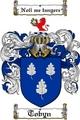 Thumbnail Tobyn Family Crest  Tobyn Coat of Arms