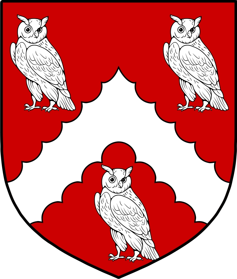 Pay for Hewitt  Family Crest / Irish Coat of Arms Image Download