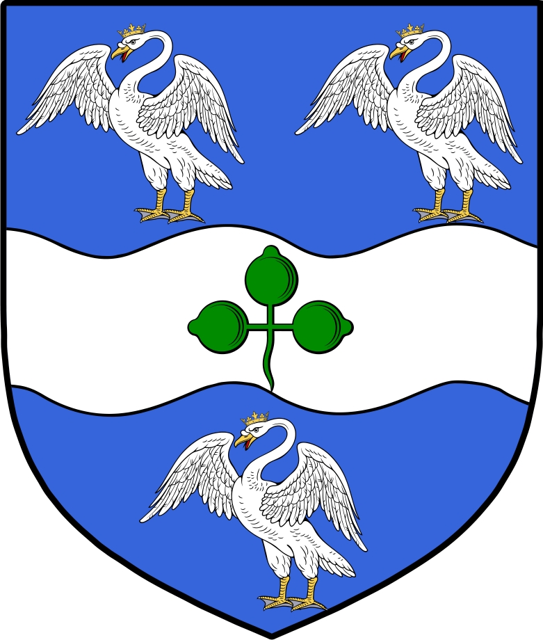 Swan Family Crest / Irish Coat of Arms Image Download ... Swan Arms