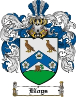 Pay for Blogs Family Crest  Blogs Coat of Arms