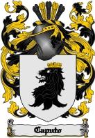 Pay for Caputo Family Crest / Caputo Coat of Arms