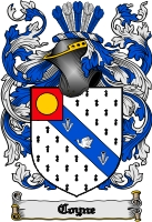 Pay for Coyne Family Crest  Coyne Coat of Arms