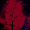 Thumbnail HALLOWEEN FOREST SOUNDS BINAURAL BEATS MP3 MEDITATION