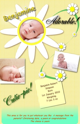 Pay for Daisy web site birth announcement