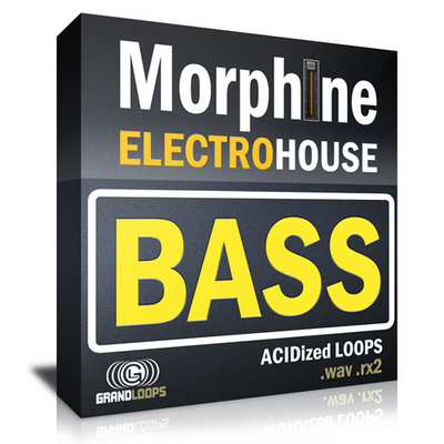 Pay for Electro House Bass Loops Morphine