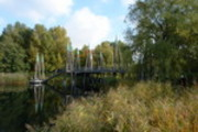 Thumbnail Rhizomatische Brücke im Britzer Garten Berlin