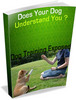 Thumbnail Does your dog understand you? Dog training exposed