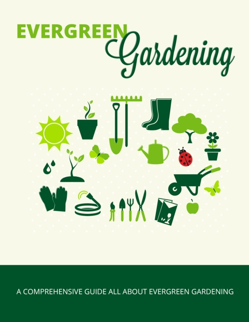 Pay for Evergreen Gardening