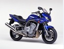 Thumbnail 2001 Yamaha FZS1000(N) Service Repair Manual INSTANT DOWNLOA