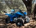 Thumbnail 2004-2008 Yamaha YFM50S Raptor ATV Service Repair Manual INSTANT DOWNLOAD