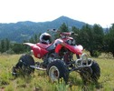 Thumbnail 1999-2002 Honda TRX400EX Fourtrax Service Repair Manual INSTANT DOWNLOAD