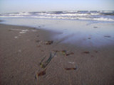 Thumbnail AKY 07 Augenblicke am Meer
