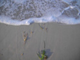 Thumbnail AKY 55 Augenblicke am Meer
