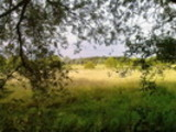 Thumbnail Postermotiv HDR - PM014 - Feldgeschichten 1