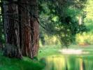 Thumbnail Mystische Reflexionen