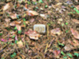 Thumbnail Postermotiv HDR - PM017 - Grabstelle / Was bleibt