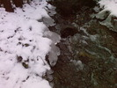 Thumbnail Im Fluss 2
