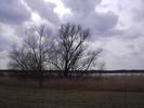 Thumbnail Wolkenspiel