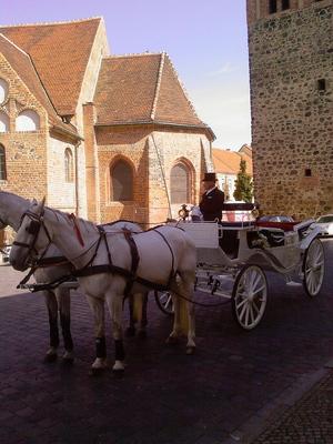 Pay for Hochzeitskutsche