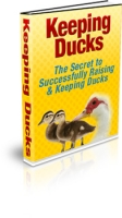 Thumbnail Keeping Ducks With MRR (Master Resale Rights)