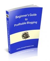 Thumbnail Beginner's Guide To Profitable Blogging - With Resale Rights