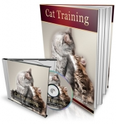 Thumbnail Cat Training - With Master Resale Rights