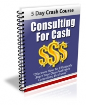 Thumbnail Consulting For Cash - With Private Label Rights