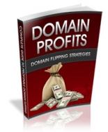 Thumbnail Domain Profits - With Private Label Rights