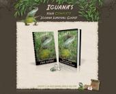 Thumbnail Iguana Survival - Minisite
