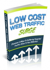 Thumbnail Low Cost Web Traffic Surge - With Private Label Rights