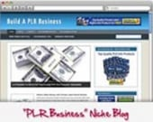 Thumbnail PLR Business WordPress Niche Blog - With Personal Use Rights