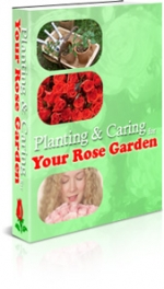 Thumbnail Planning & Caring Your Rose Garden - With Master Resale Rights
