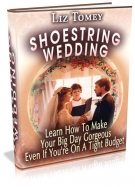 Thumbnail Shoestring Wedding - With Master Resale Rights