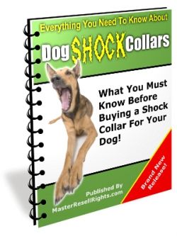 Pay for Dog Shock Collars With Master Resale Rights