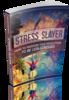 Thumbnail Stress Slayer 2014