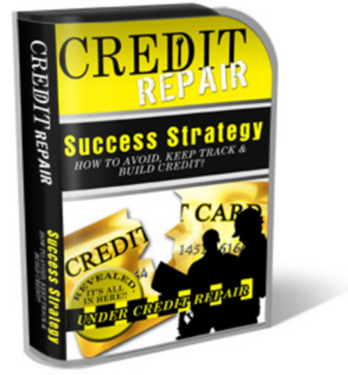 Pay for Credit Repair Website Templates PLR Pack