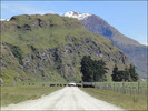 Thumbnail The New Zealand Relocation, Immigration and Retirement Guide