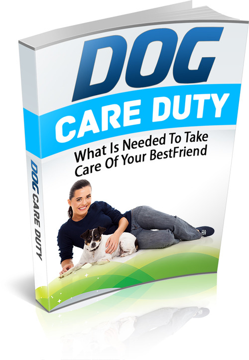 Pay for Dog Care Duty MRR